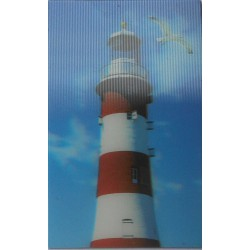 Magnet lenticulaire phare