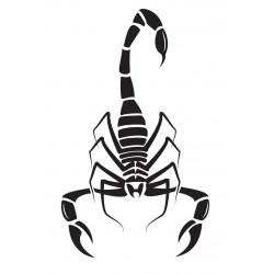 Sticker Scorpion, noir