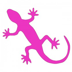 Sticker Gecko, fushia